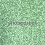 Evergreen 450