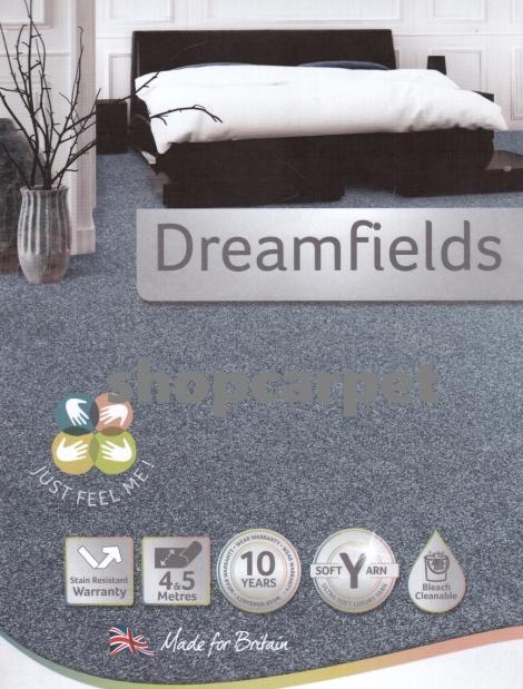 Dreamfields POS x
